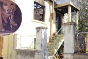Σκύλος έσωσε την αφεντικίνα του από φωτιά στην Ξάνθη (pics)